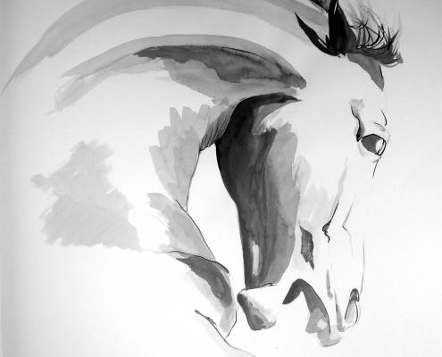 Tête de cheval - Dessin à l'encre de Chine